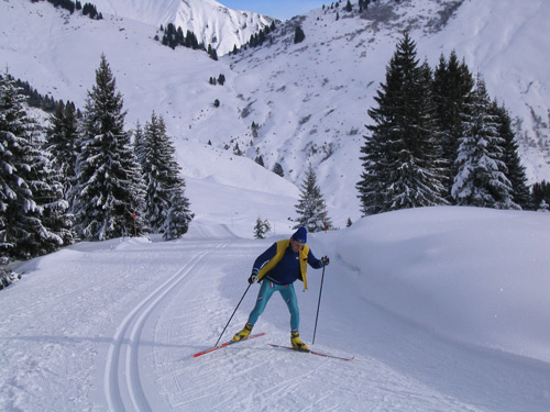 Track skiing